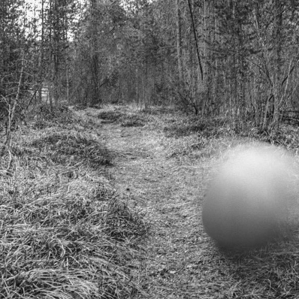Ball Wald 32