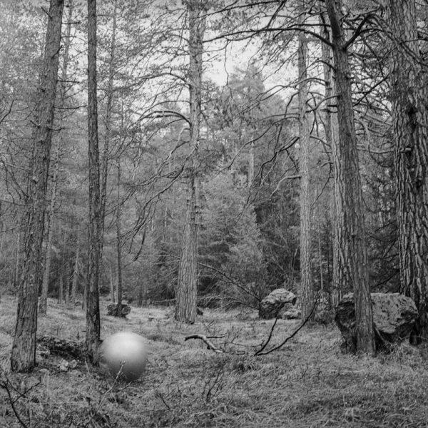Ball Wald 56
